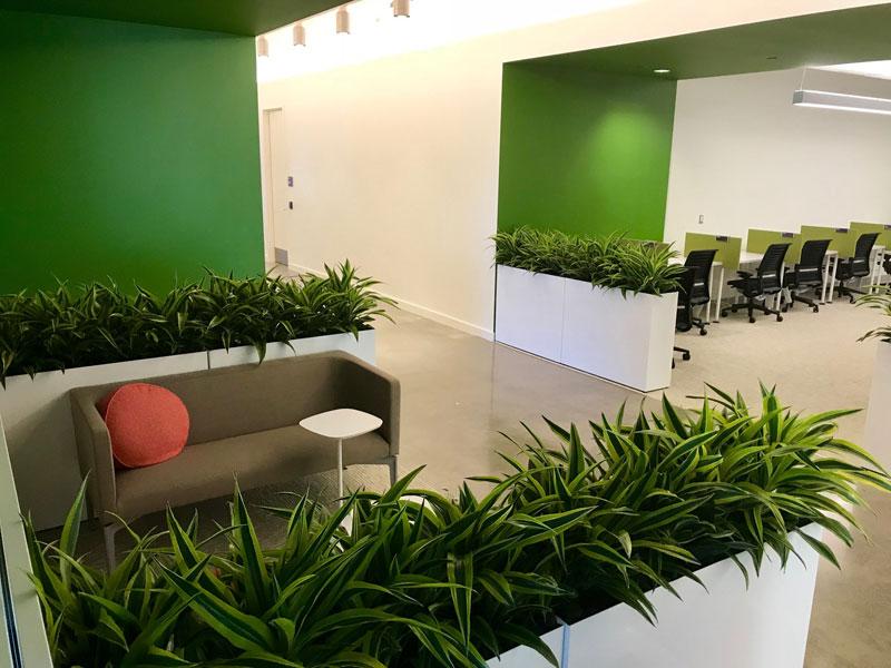 Plantscaping - Good Earth Plants